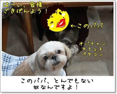 2010_0414_192923AA.jpg