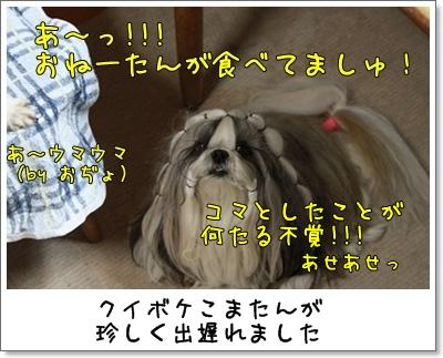 2010_0414_193126AA.jpg