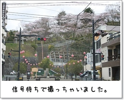 2010_0416_113044AA.jpg