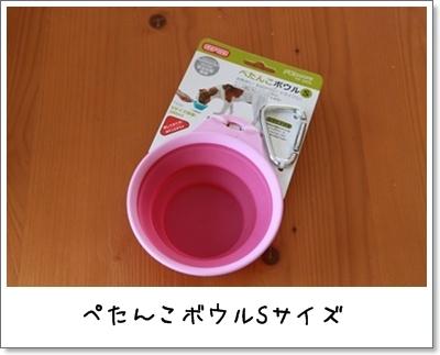 2010_0418_100519AA.jpg