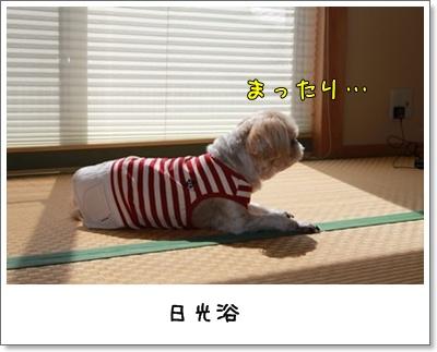 2010_0418_131554AA.jpg