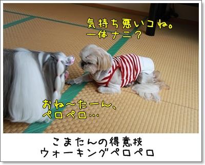 2010_0418_132105AA.jpg