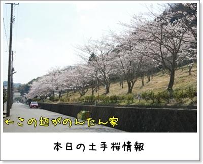 2010_0418_142621AA.jpg