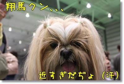 2010_0523_112920AA.jpg