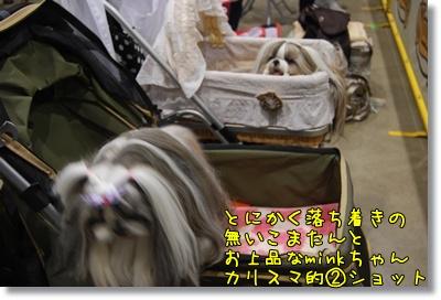 2010_0523_113003AB.jpg