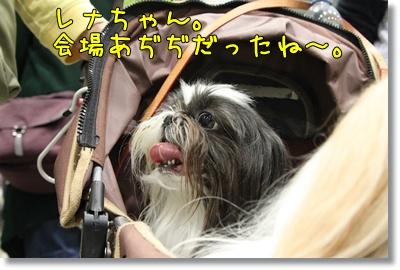 2010_0523_113036AA.jpg