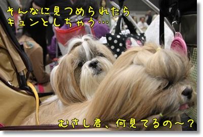 2010_0523_113109AA.jpg