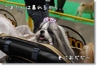 2010_0523_115918AB.jpg