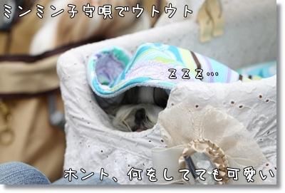 2010_0523_141913AA.jpg