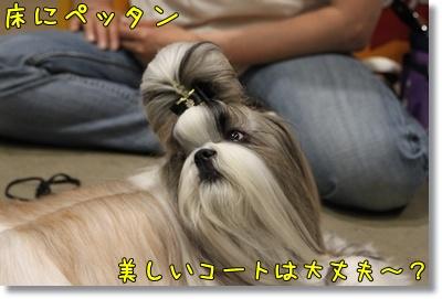 2010_0523_153414AA.jpg