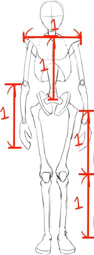 肩幅と足の長さの目安