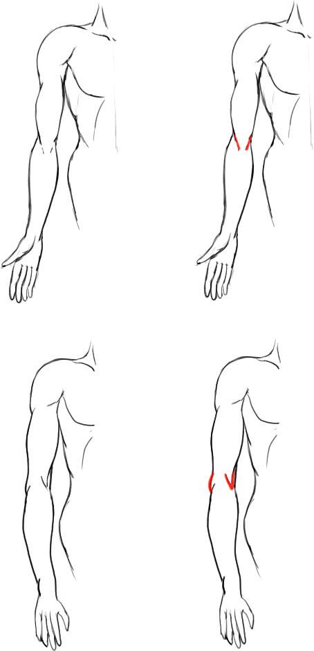 肘の描き方05