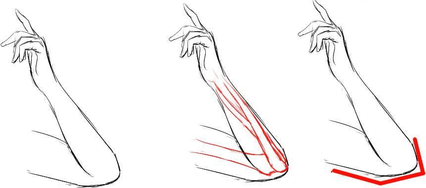 肘の描き方10
