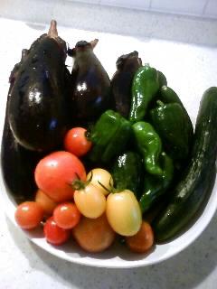 2012.6.30畑収穫⑤お皿