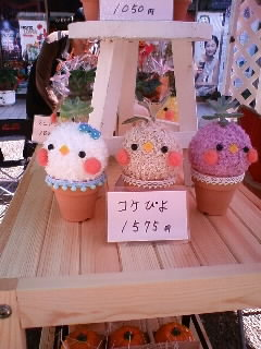 2012.10.20弘法市⑥隣のお花屋さん