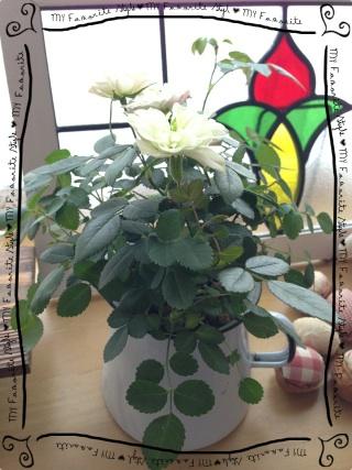 2013.1.18リビングのお花④