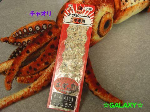 010_20110122161657.jpg