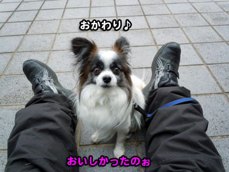 ぶりっこ04