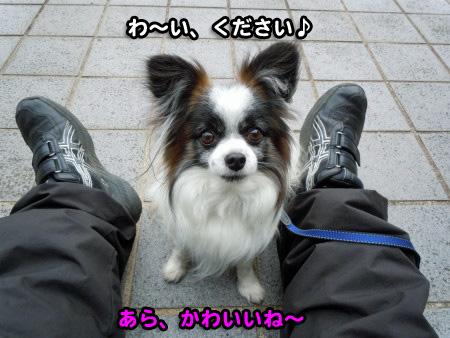 ぶりっこ02
