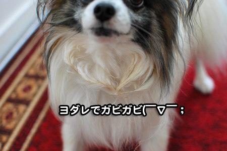 おかえり~♪07