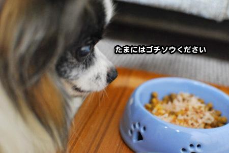 一喜一憂03