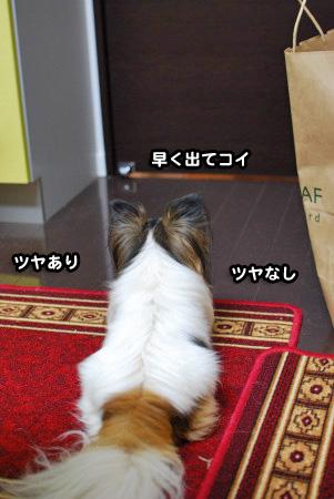 一喜一憂01