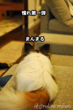 ソファ生活01