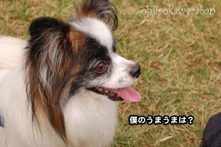 一年越しのおデート・後編03