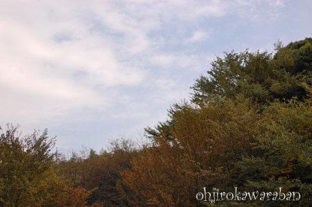四季の森デート05