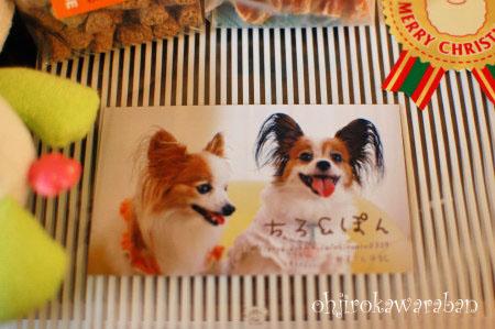 横浜と石神井公園♪01