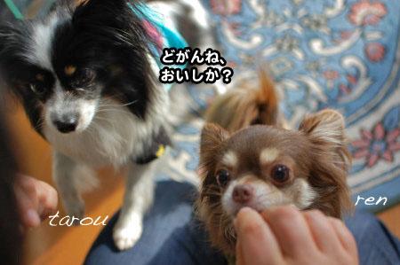 福岡押し掛けオフ(笑)04