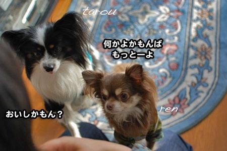 福岡押し掛けオフ(笑)03