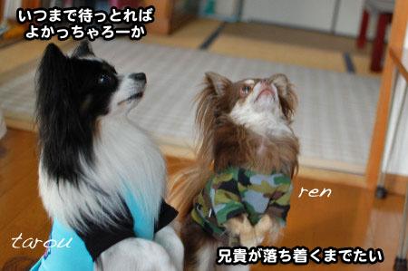 福岡押し掛けオフ(笑)08