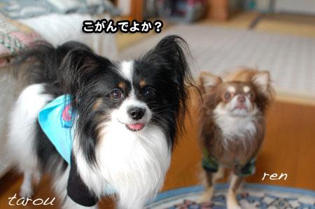 福岡押し掛けオフ(笑)11