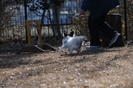 昭和記念公園♪04