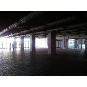 写本 -2011-08-17 10.18.51(1)