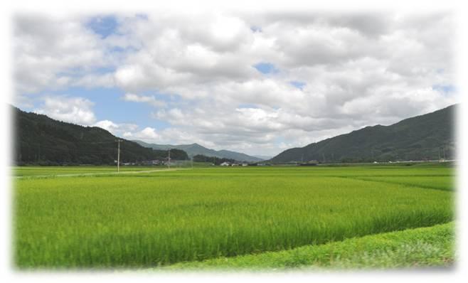 20110805遠野