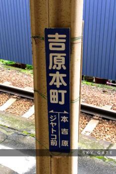 2012_05_02_1.jpg