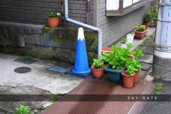 2012_05_05_4.jpg