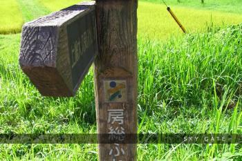 2012_08_22_4.jpg