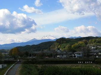 2012_11_15_8.jpg