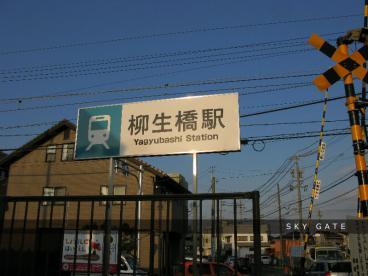 2013_03_03_13.jpg