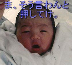 kaikoroku37.jpg