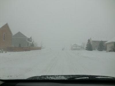 snow12161302.jpg