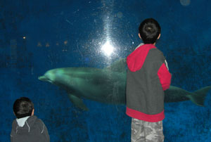 zoo03241018.jpg