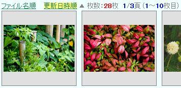 photo-asc.jpg