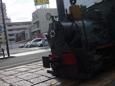 P1150089.jpg