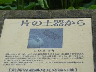 d472.jpg