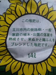 SH380108.jpg