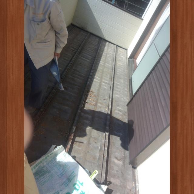 PhotoGrid_1416871632773.jpg